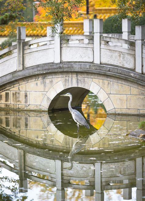 china garten heinsberg ffnungszeiten china garten hof offnungszeiten best 28 images