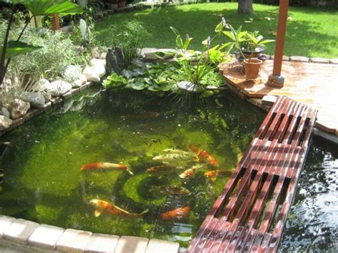 backyard koi ponds 435 best images about pond and garden landscaping on