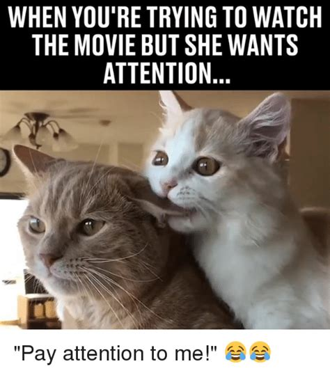 Pay Attention To Me Meme - 25 best memes about pay attention to me pay attention to me memes