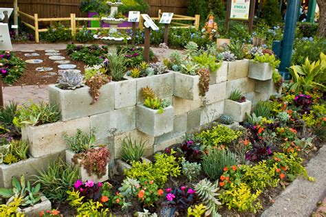 Succulent Garden Ideas 50 Best Succulent Garden Ideas For 2017