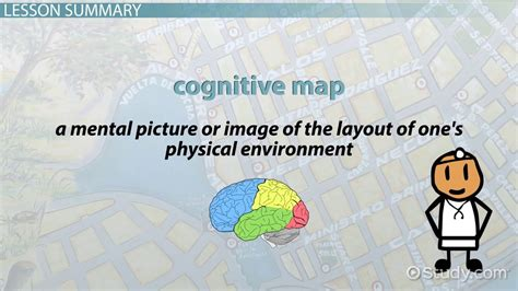 Examples Of Career Goals For Resume by Cognitive Map Definition And Examples Video Amp Lesson