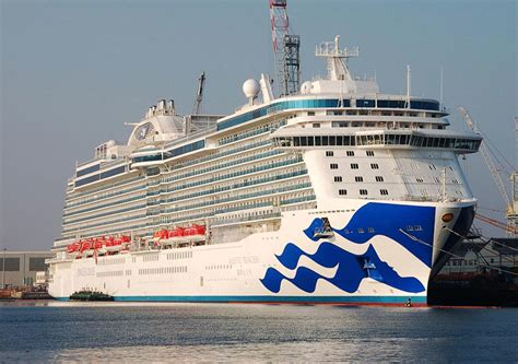 princess x cruises cruise ship royal princess princess cruises marine work