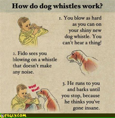 do whistles work how do whistles work random pictures