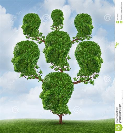 Family Tree Royalty Free Stock Photo Image 31671185 Genealogical Tree Concept Family Tree