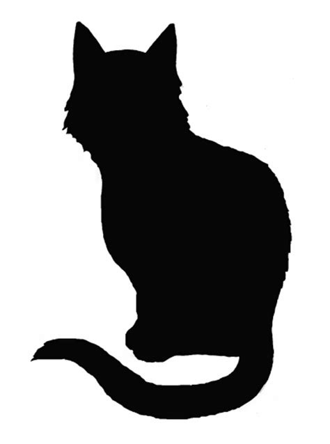pictures of a black cats black cat silhouette