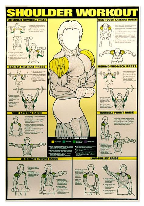 shoulder workout chart workout it is