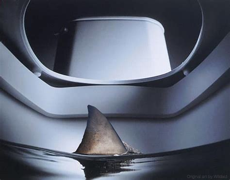 shark bathroom sharks in the bathroom when irrational fear takes over
