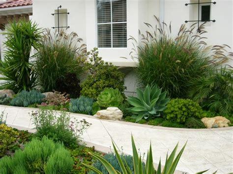 modern succulent garden httplometscom