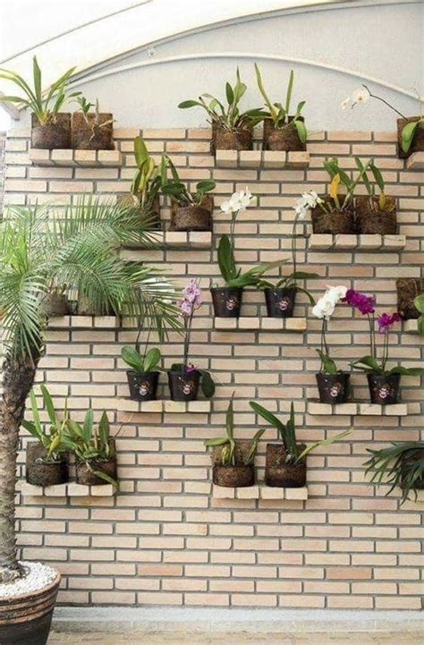 desain  memperindah dinding  tanaman