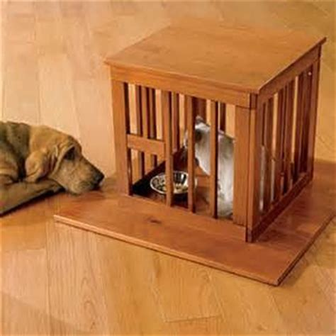 dog proofing house tales from a sears house dog proof cat feeding station