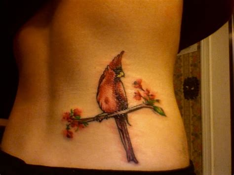cardinal rose tattoo asheboro 17 best images about tats on cardinal bird