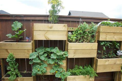 vasi per orto verticale orto verticale sul balcone orto in balcone coltivare
