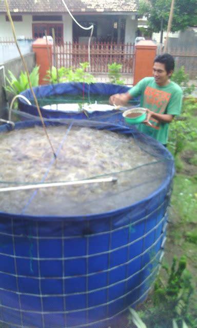 Jual Terpal Kolam Ikan Palembang keunggulan kolam terpal bundar palembang jual kolam