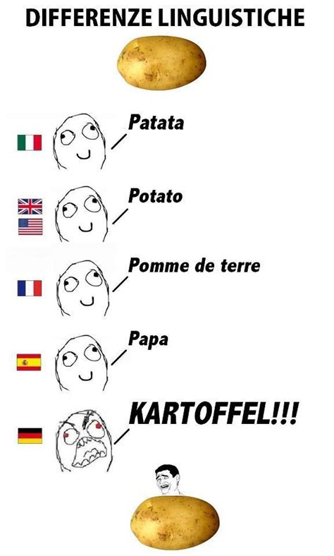 German Butterfly Meme - 64 best german memes images on pinterest funny images