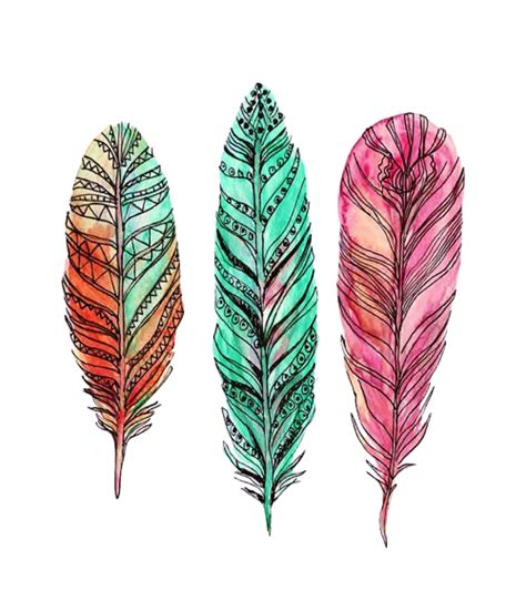 Feather Tattoo Png | tumblr mmx45bxjp41sr5fyjo1 500 png 500 215 582 girl tattoo