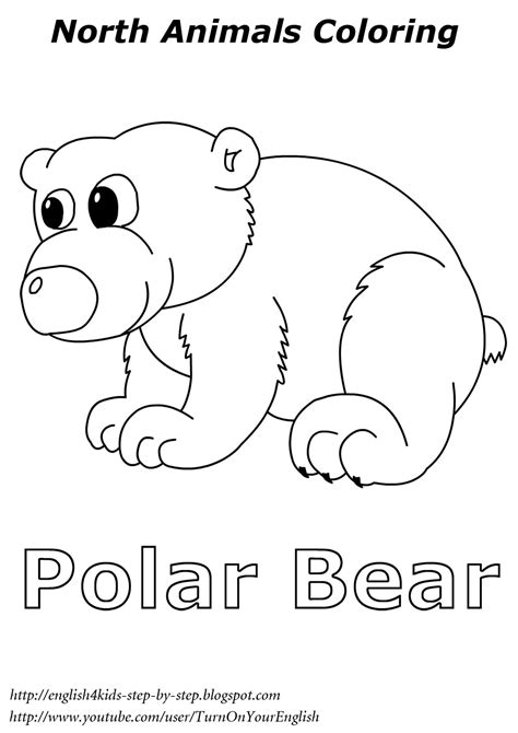 Arctic Animals Coloring Pages For Preschoolers arctic animals song for children