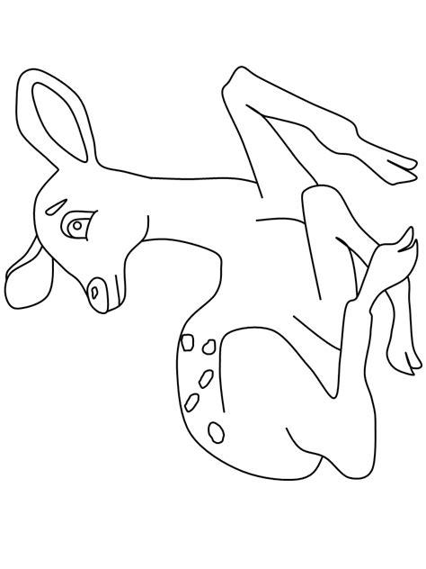 doe deer coloring pages doe deer coloring book coloring pages