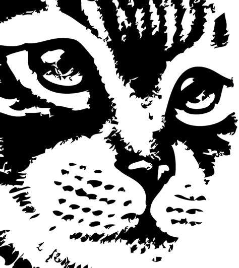 imagenes para dibujar negro y blanco dibujo en blanco y negro elegant personaje de dibujos