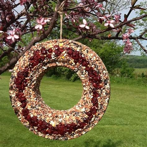 dried cranberry bird seed wreath feederaviary by