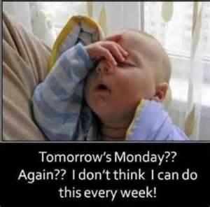 Sunday Meme - things that totally sum up how we feel on a sunday night