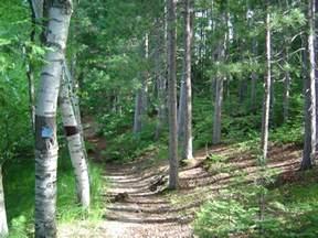 Hiking Trails In Hiking Trails
