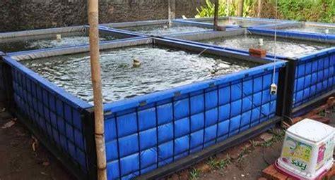 Jual Kolam Terpal Untuk Budidaya Ikan Konsumsi cara sukses budidaya lele kolam terpal kolam terpal
