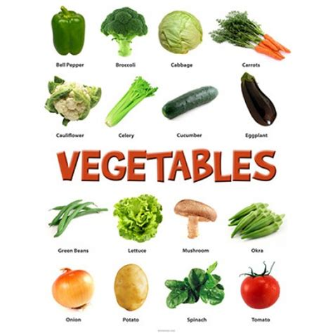 different type of leafy vegetable with name types of vegetables