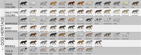 dog color pattern names canine colors jpg 1800 215 704 wolves pinterest coats