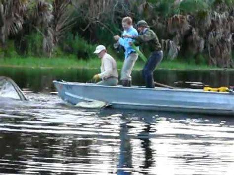 alligator boat florida alligator eats aluminum boat youtube