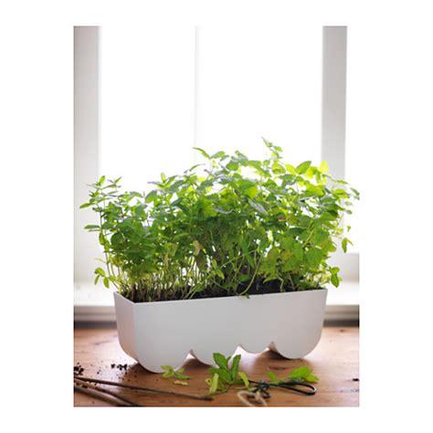 ikea planters ikea aggplanta planter 14 x 4 x 5 quot off white steel ebay