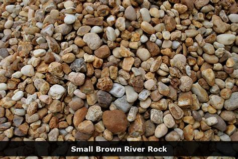 rock for gardens where to buy where to buy rocks for garden shrubs for shade zone 5