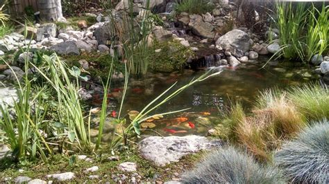 Aquascapes Inc by Aquascape Inc Makes It Simple With 8 Tips Pondman