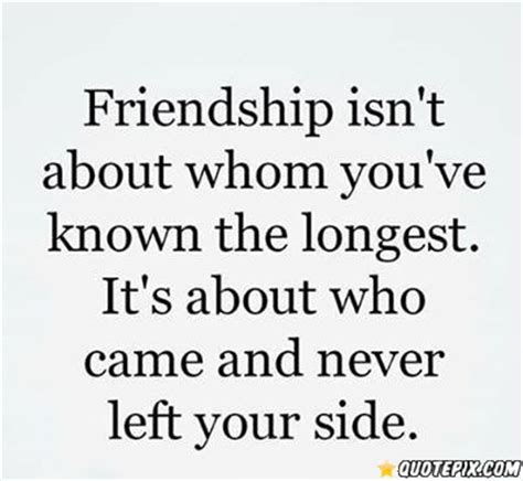 friendship meaning quotes true meaning of friendship quotes quotesgram