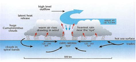 cyclone formation diagram hurricane formation diagram car interior design