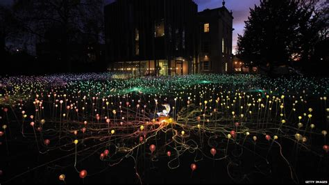bruce munro field of light bbc news in pictures bruce munro installation lights up