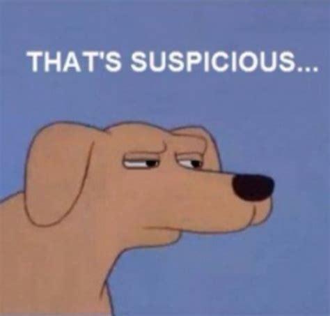 Suspicious Meme - suspicious dog suspiciousdog twitter