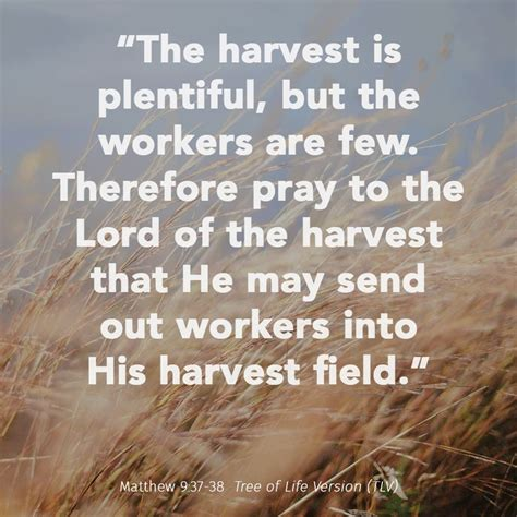 the harvest is plentiful but the workers are few 110 best images about the harvest quot be the servant of all
