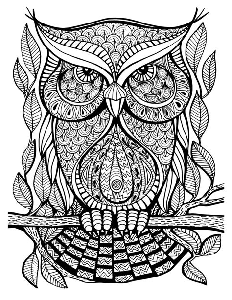 coloring book for adults stress relieving stained glass 1000 images about zentangle animals on owl