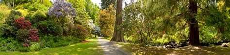 garden images bodnand garden collection panorama art