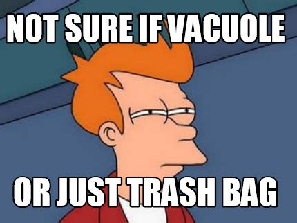 Meme Generator Not Sure If - meme creator not sure if vacuole or just trash bag meme