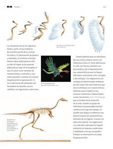 libro de ciencias naturales 6 2016 ciencias naturales 6to 2014 2015