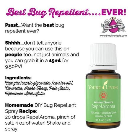 scents that repel bed bugs 1000 images about young living essential oils on