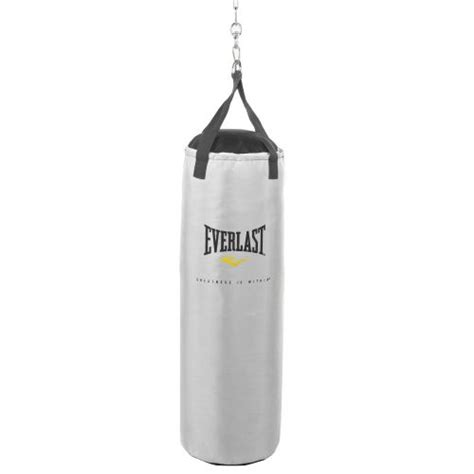 everlast 174 platinum 70 lb synthetic leather heavy bag