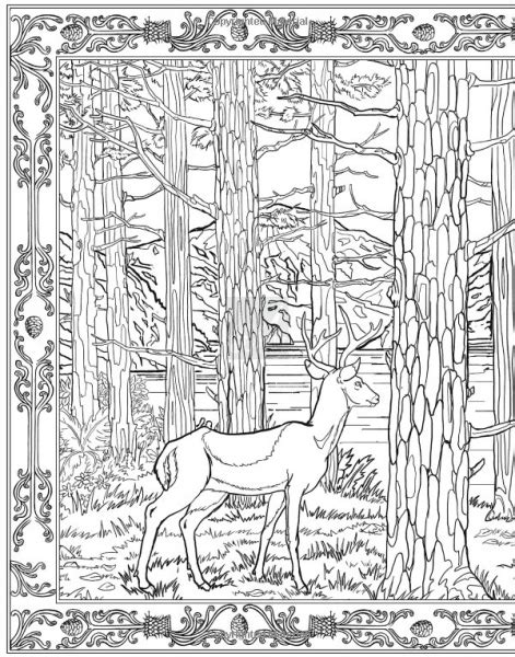 harry potter the coloring book photos harry potter official coloring book pages