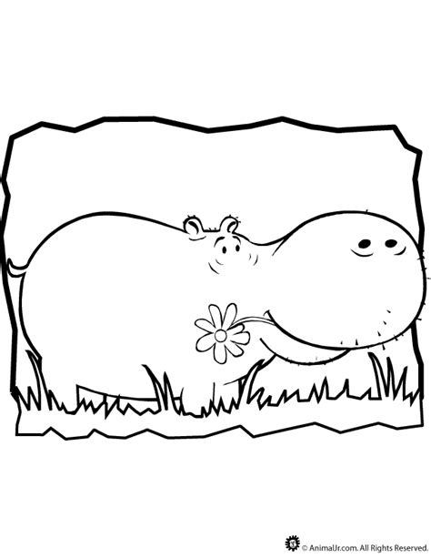 hippo coloring page woo jr kids activities