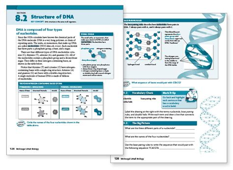 Section 10 2 Review Dna Structure by Holt Mcdougal High School Biology Textbooks
