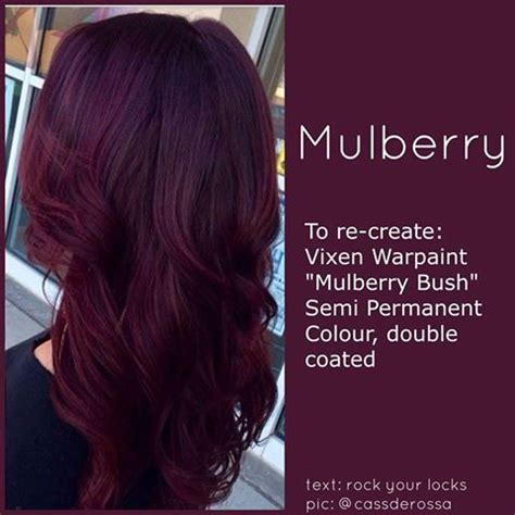 mulberry hair color 25 best ideas about violet hair on violet