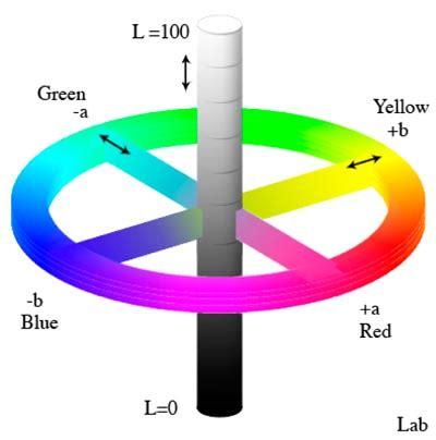 colors of labs jenis jenis warna dalam desain grafis yang harus anda