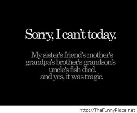 im sorry quotes i m sorry quote 2014 thefunnyplace
