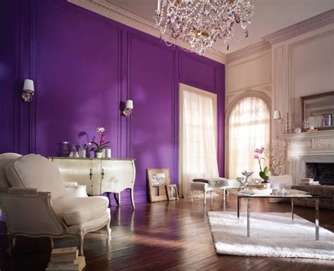 glorious purple wall interiors  color
